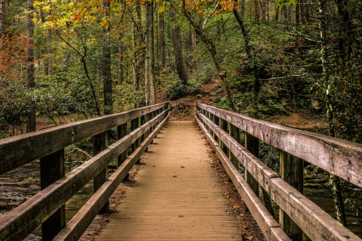 Cades Cove, Tennessee15